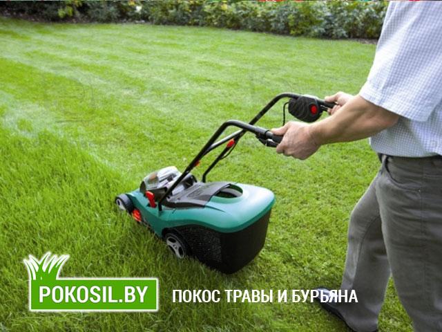 Уход и уборка газона в Минске